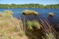 Hochmoorsee1